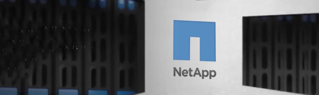 NetApp-2.png